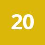 20-icon